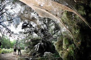 Αυτά είναι τα μεγαλύτερα άλυτα μυστήρια του κόσμου
