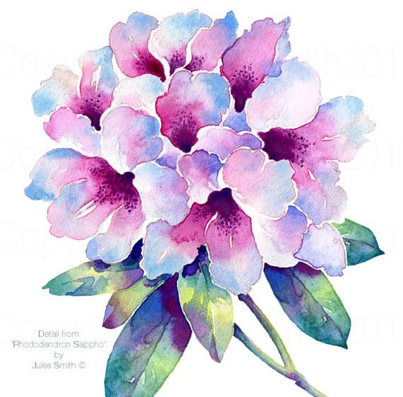 watercolour flower painting rhododendron sappho original handmade