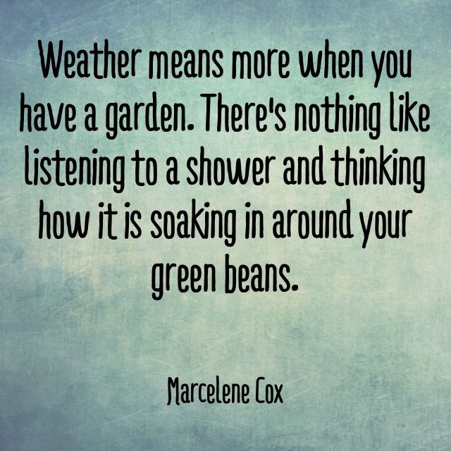 Cool Garden Quotes from The Wanderer Guides #quotes #gardenquotes #garden