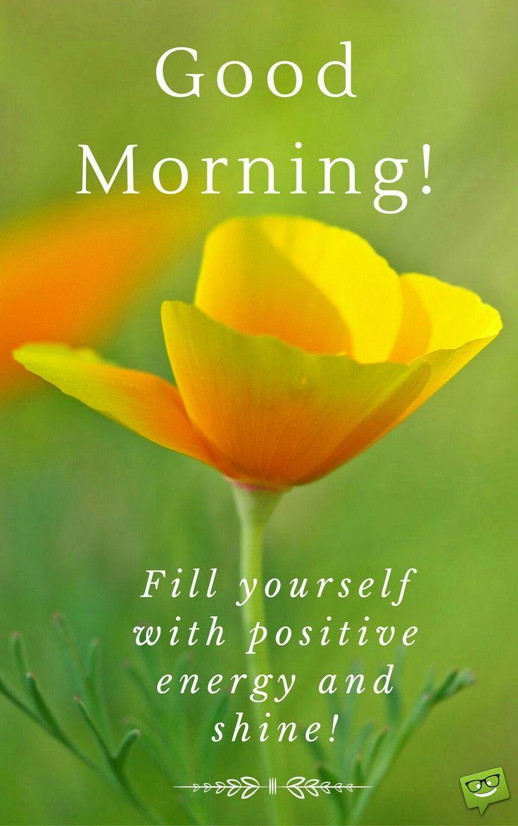 17 Terbaik Kutipan Selamat Pagi Di Pinterest Selamat Pagi