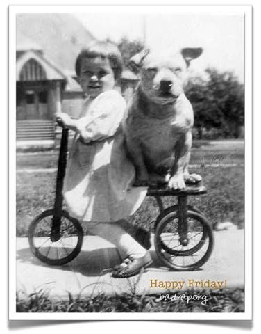 vintage pit on a tricycle (Looks like the dog is stronger than the kid, he should be pushing her)