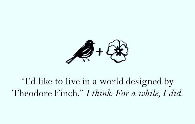 Dreams Have Wings: În căutarea lui Theodore Finch 🔎 #FindFinch