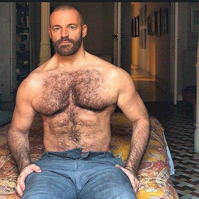 gay bear Older