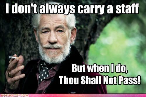 LOL: Nerd, Interesting Wizard, Geek Stuff, Century Stuff, Funny, Geek Side, Favorite Quotes, Middle Earth, Pass