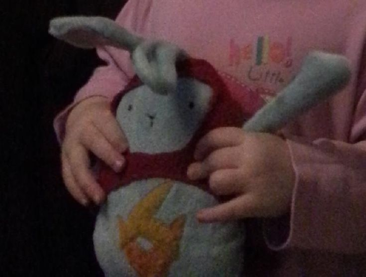 Lost on 05 Sep. 2016 @ Warwick Castle. Hi, Our 3 year old daughter left Hoppity…