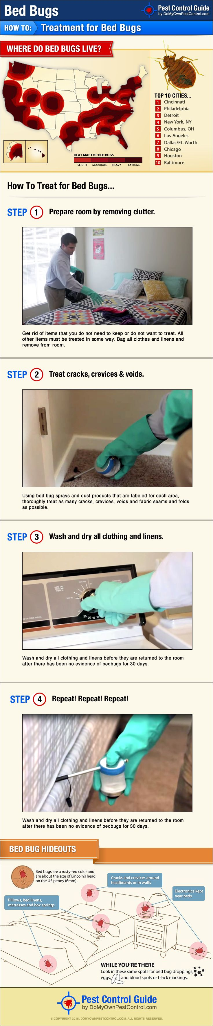How To Get Rid of & Kill Bed Bugs Yourself - DIY Bed Bug Treatment