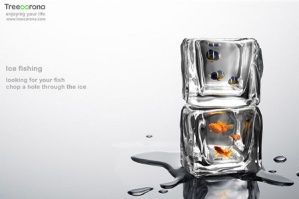 96 best images about fish tank aquarium on pinterest for How to make ice in a fish tank