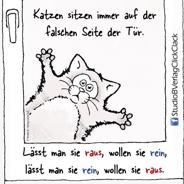 Welcher Katzenbesitzer kennt das nicht! 😂 Ein Phänomen... . . #katze #comic #zeichnen #katzen #catsofinstagram #catstagram #cats #werkennts #pets #lustig #lustigebilder #weisheit #isso #designer #kreativ #atelier #mediengestalter #grafikdesign #geschenkartikel #drawing #sketch #doodle #draweveryday #characterdesign #kitten #miau #miow #purr