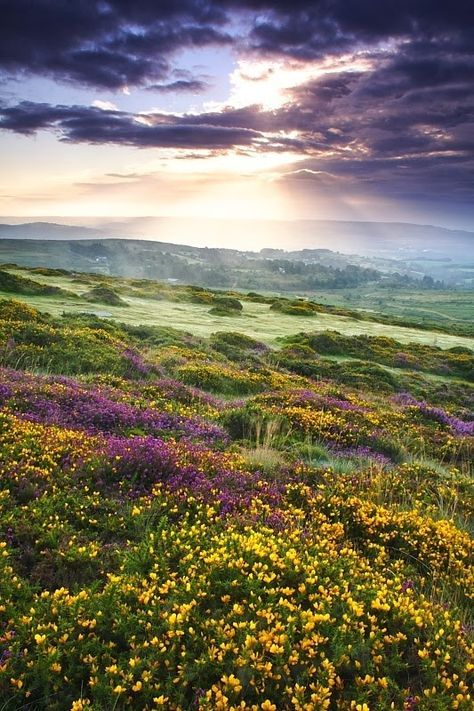 1276 Best Picturesque Images On Pinterest Beautiful Places Nature And Beautiful Scenery