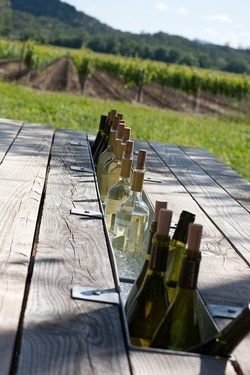 outdoor picnic table with built in center channel for ice to chill your wine or maybe keep your salsa cold.