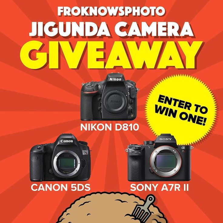 I am giving away one of the following to one winner.  A Nikon d810 Canon 5DS or Sony a7R ii.  Link is in the bio.  Which camera would you choose? #giveaway #cameraporn by jaredpolin