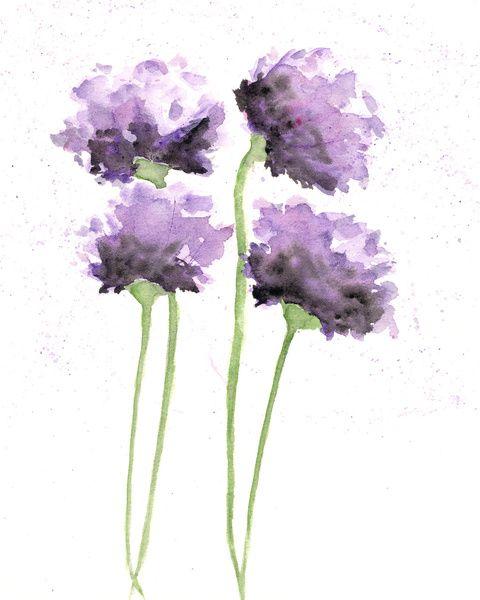 Flowers, poppies, watercolor flowers Art Print