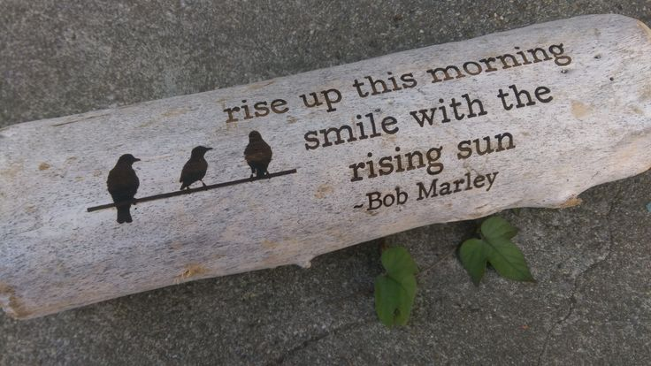 start your morning with a bit of encouragement from Bob and these sweet little…