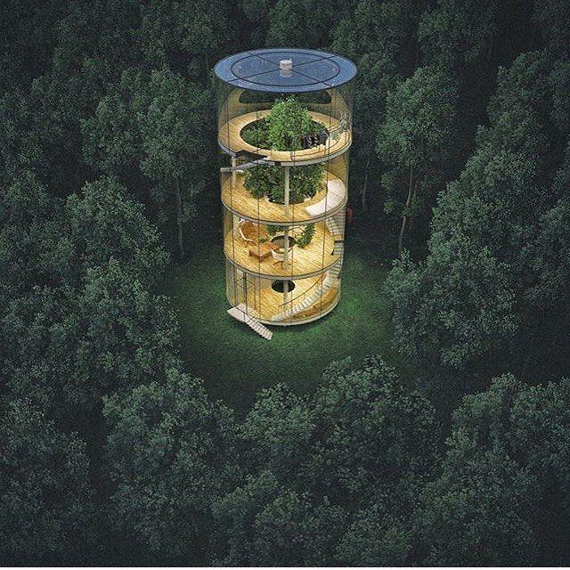 Glass Tree House By A.Masow Architects.(2013)