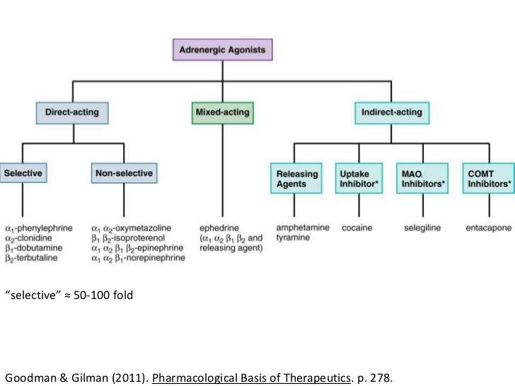 Adrenergic agonists  Paramedic EMT RN nurse emergency medical techician EMS