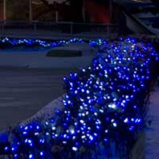 Blue Christmas Net Lights