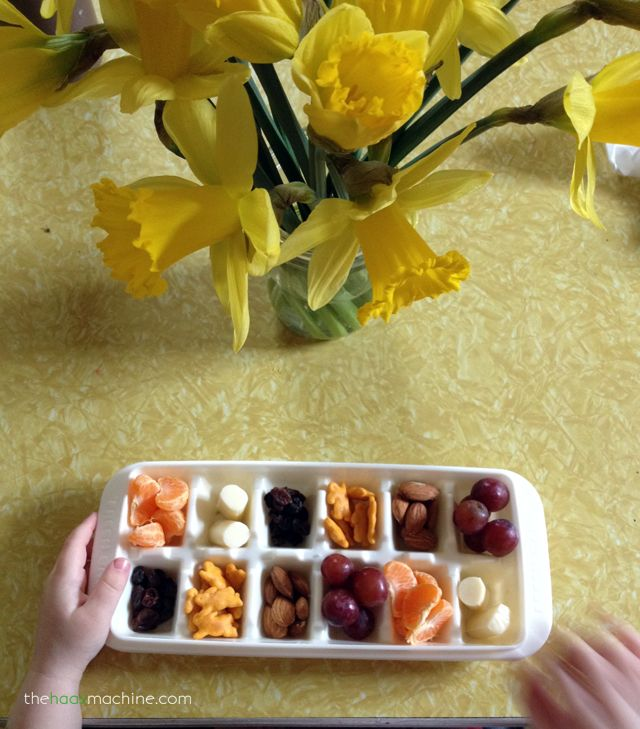 Eat every 2 hours (even if you're not hungry) to ward off morning sickness! My toddler & I enjoyed snacks like this often: cuties, string cheese, raisins, cheddar bunnies, almonds, & grapes