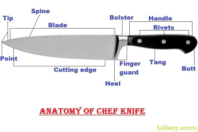 Chef Knife Anatomy Parts Of Chef Knife Kitchen Knives Knife Chef Knife