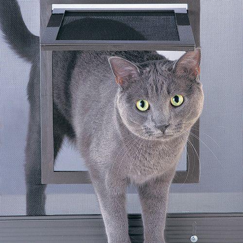 petsafe dog cat pet screen door for window or door ebay