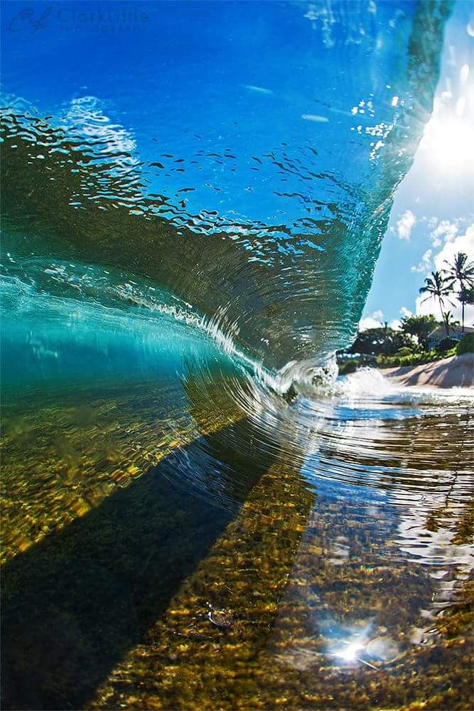 Perfect Wave ... This is the clearest water, in a wave, that I have ever seen! And I lived in Hawaii.