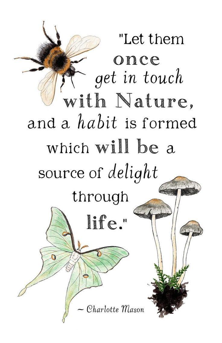 Charlotte Mason Quotes On Nature