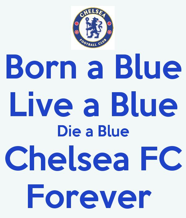 'Born a Blue Live a Blue Die a Blue Chelsea FC Forever ' Poster