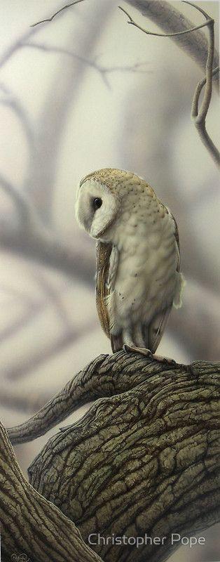 Barn Owl,H 90cm X W 31 cm, / Acrylic on board, 2011 / One of 24 original artworks on show at my So…