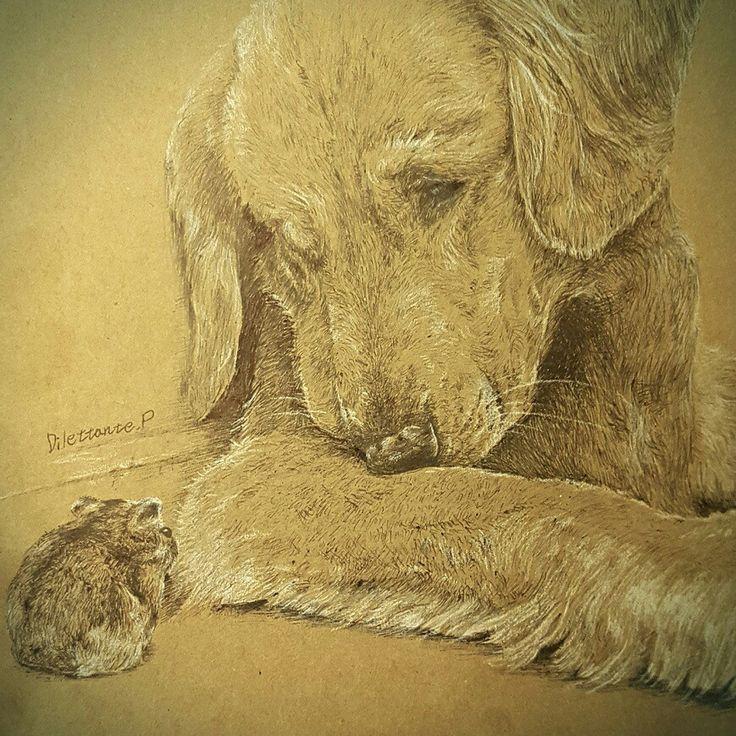 #draw #drawing #art #illustration #picture #goldenretriever #retriever #dog #dogs #hamster #hamsters #friend #friendship #bob #animal #골든리트리버 #리트리버 #햄스터 #친구 #개 #우정 #일러스트 #동물