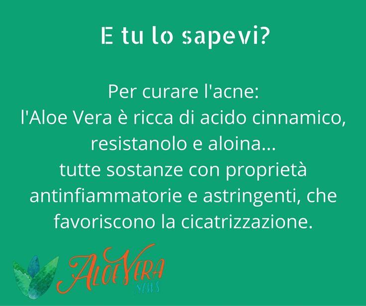 Per curare l'acne: l'Aloe Vera è ricca di acido cinnamico, resistanolo e aloina...tutte sostanze con proprietà antinfiammatorie e astringenti, che favoriscono la cicatrizzazione.