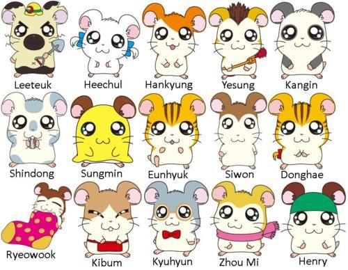 Does anyone else notice that these Japanese hamsters have  Kpop names?