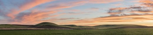 Painted Farmland (Palouse) Jon Glaser