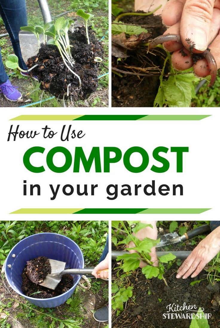 147 Best How To Compost Images On Pinterest Growing Vegetables Composting And Vegetable Garden