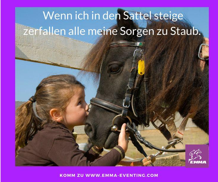 #bierhefepferd, www.emma-eventing.com