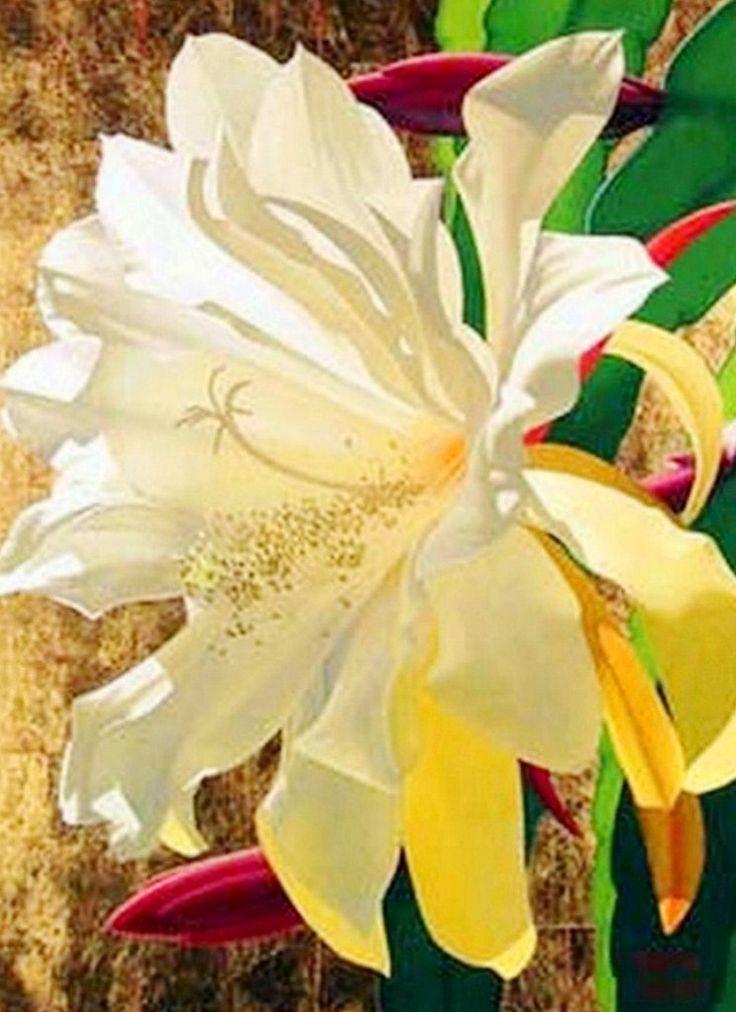 arte-pinturas-flores-bonitas