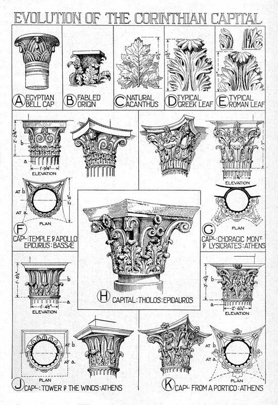 Corinthian capital: Ornate capital decorated with two rows of acanthus leaves, volutes, and a fleuron in the middle of the abacus atop the c...