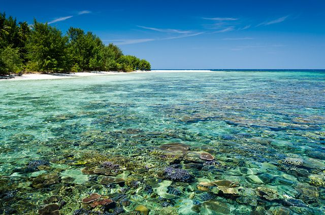 Karimunjawa  is an archipelago of 27 islands in the Java Sea, Indonesia, approximately 80 kilometres northwest of Jepara.