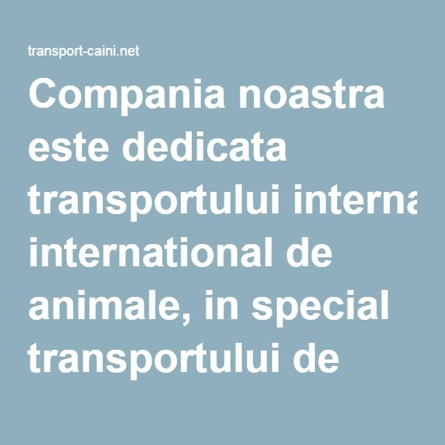 Compania noastra este dedicata transportului international de animale, in special transportului de caini la nivel european.
