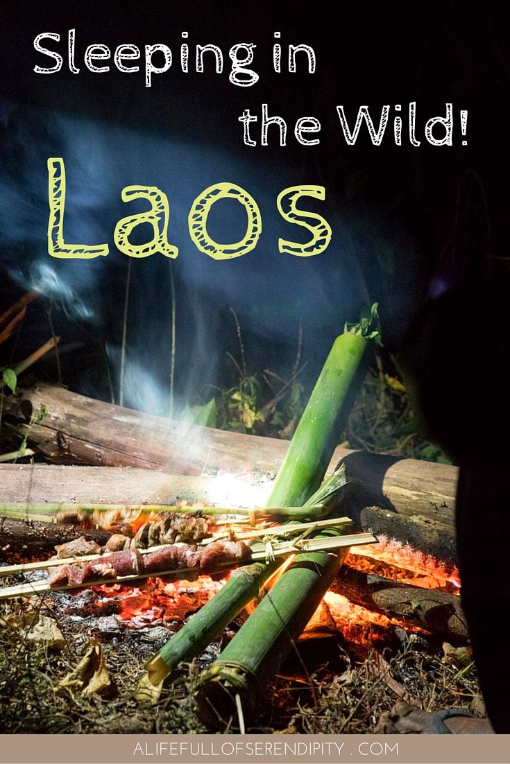 Sleeping in the Wild - Laos. Trekking for two days, building our own bamboo tent, cooking food in the wild using natural resources, listening to music under the stars, drinking coffee out of a bamboo tube - these are the things I experienced on this magical two-day adventure in the Laotian Jungle.