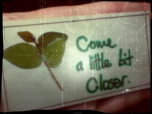 come a little bit closer… harvest moon- neil young eat, pray, love soundtrack