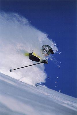 Alta Peruvian Lodge Live, Work, and Ski in Alta, Utah!