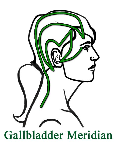 One-sided headaches are a sign that the Gallbladder Meridian is blocked. The key to relieving a one sided headache is to get the Qi (energy) moving in the Gallbladder meridian. Once the meridian is unblocked and the Qi is moving, the pain dissipates. Five steps to opening the Gallbladder meridian: Massage the top of the…Continue Reading →