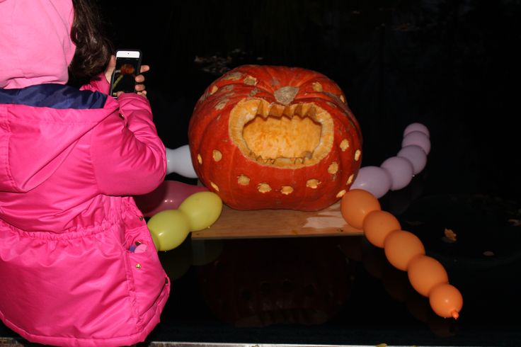Great Pumpkin Trail at the Royal Botanical Gardens - October 22 & 23 head to the Great Pumpkin Trail at the RBG for a night of family fun. I would recommend bringing a small flashlight as the trail (even with lit pumpkins) is quite dark in some spots.  Afterward there were plenty of themed activities and entertainment to keep the kids entertained until it was time to head home.  This event does require pre-registrationt.