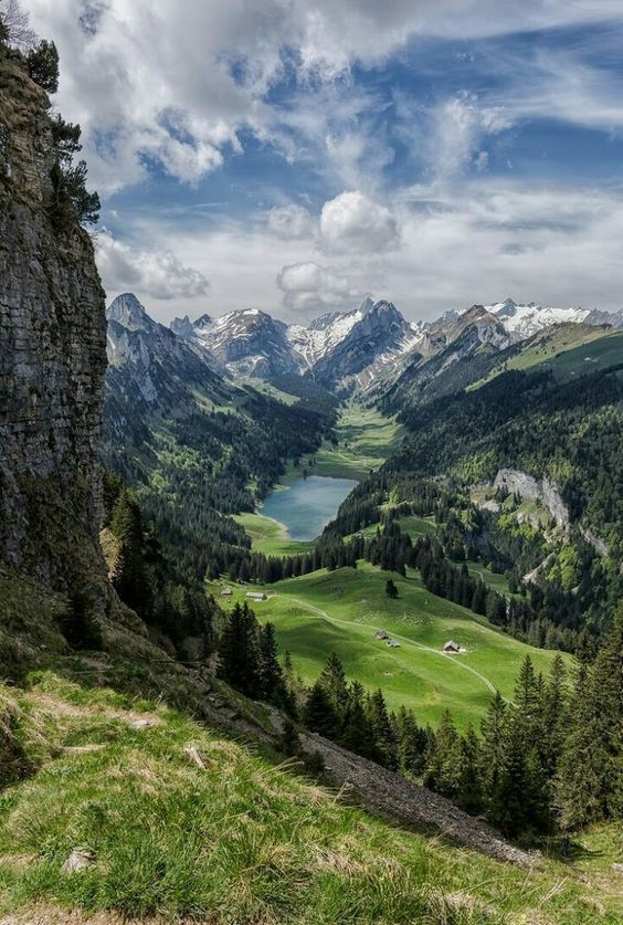At the Swiss Alps.