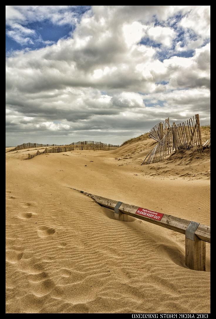 South Shields Sand Dunes