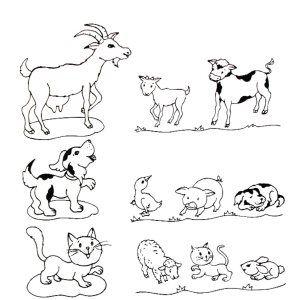 Výsledok vyhľadávania obrázkov pre dopyt omalovanky zvierata