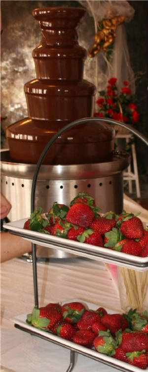 Chocolate fountain + strawberries! Rent yours today from That Special Event.