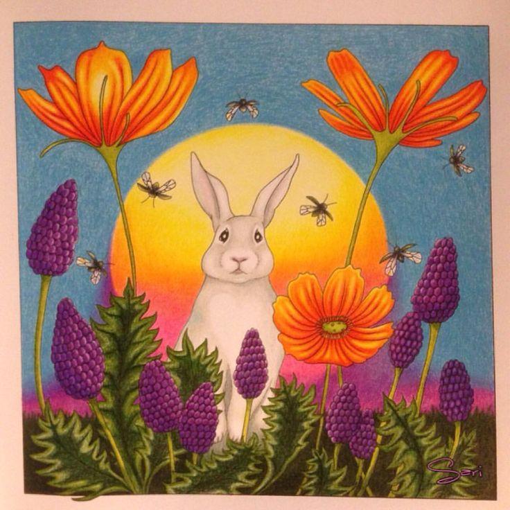 """6 tykkäystä, 2 kommenttia - Sari Hankaniemi (@sari_kani_) Instagramissa: """"#coloring#adultcoloringbook#bunny#sarihankaniemi#kaunisluontovärityskirja…"""""""