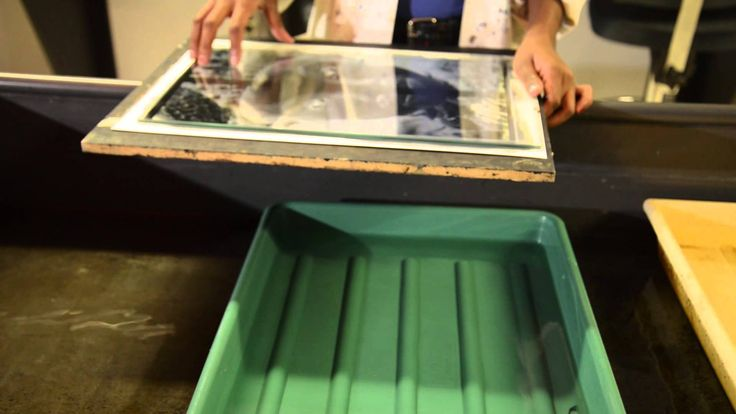 The Cyanotype Process (Humber College)