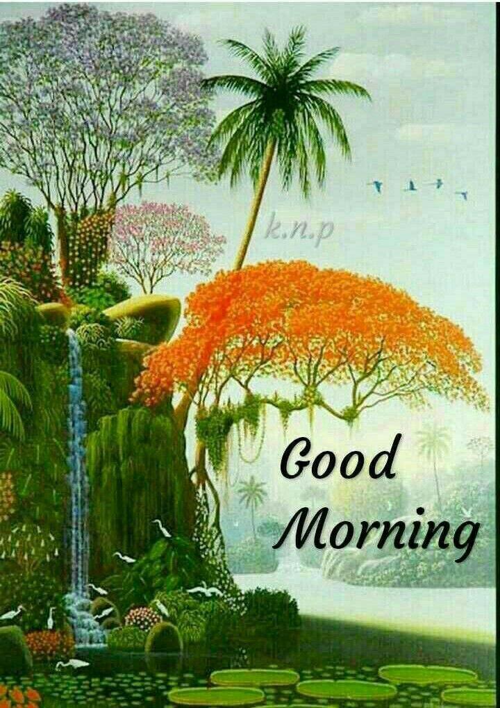 Good Morning Greetings Good Morning Rose Gif Good Morning Quotes Good Morning Picture