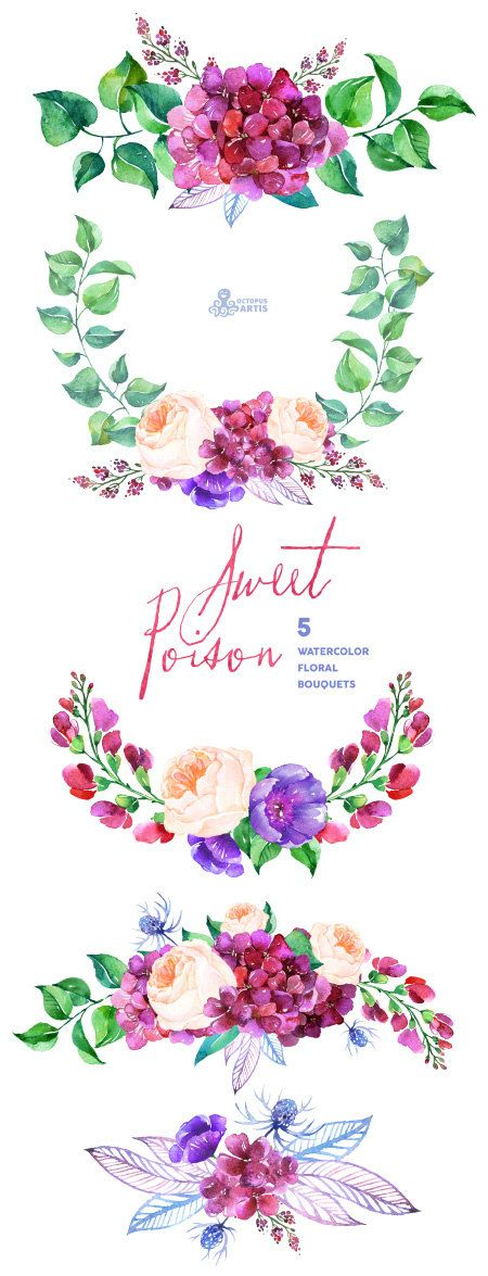 Sweet Poison: 5 Watercolor Bouquets hydrangea by OctopusArtis